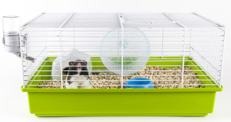 wire top cage for hamster